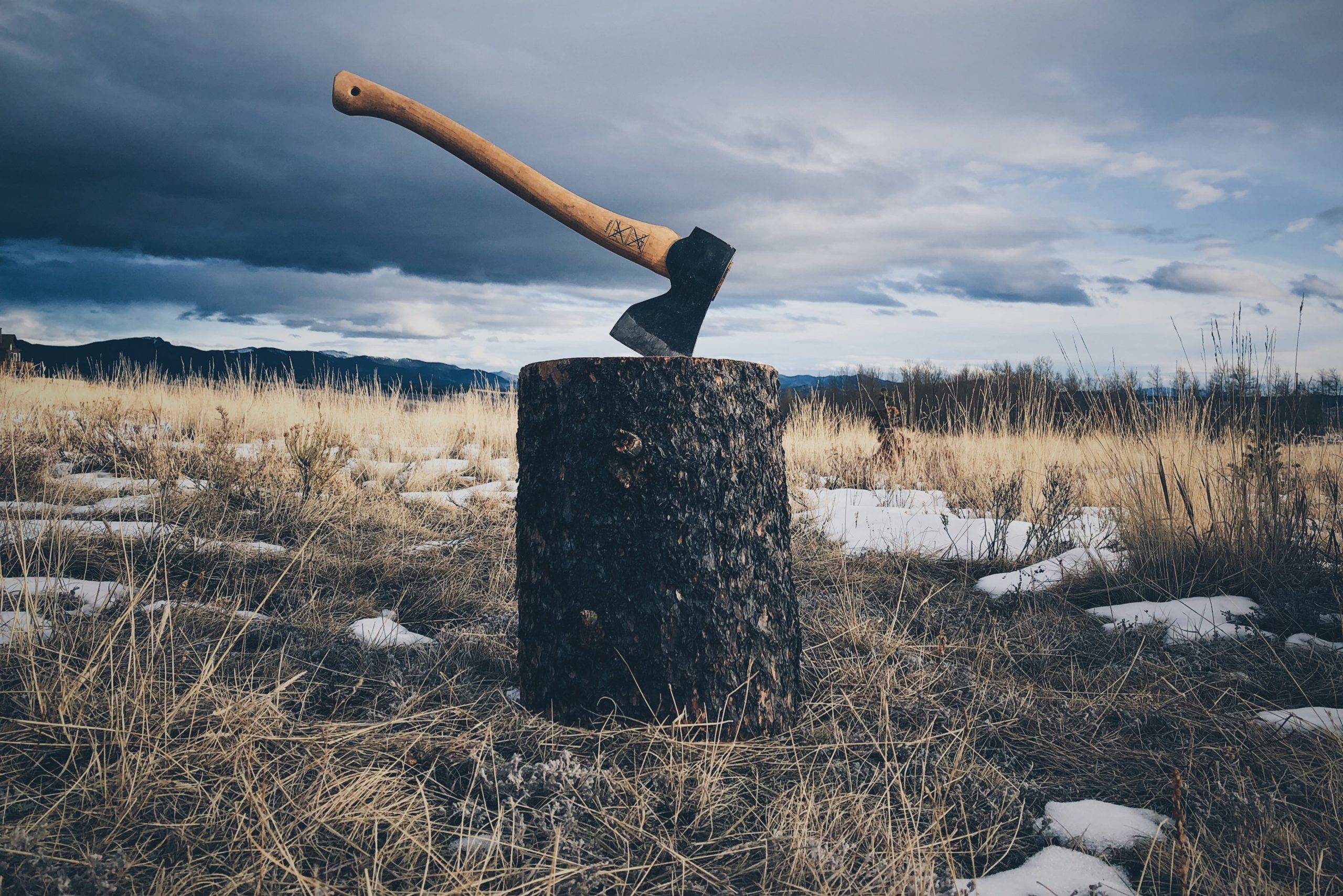 the parable about the competition of lumberjacks