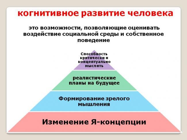 2-kognitivnoe-razvitie-cheloveka.jpg