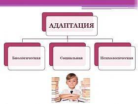 adaptaciya-cheloveka-vidy-ponyatie-i-faktory-2-280x210.jpg