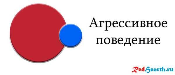 tipy-povedeniya-cheloveka-v-obshchestve-agressivnoe-povedenie.jpg